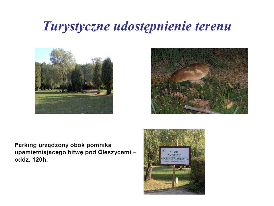 Turystyczne udostępnienie terenu Parking urządzony obok pomnika upamiętniającego bitwę pod Oleszycami – oddz. 120h.