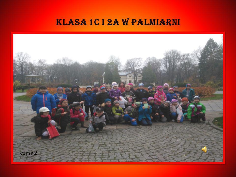 KLASA 1C I 2A W Palmiarni cz ęść 2