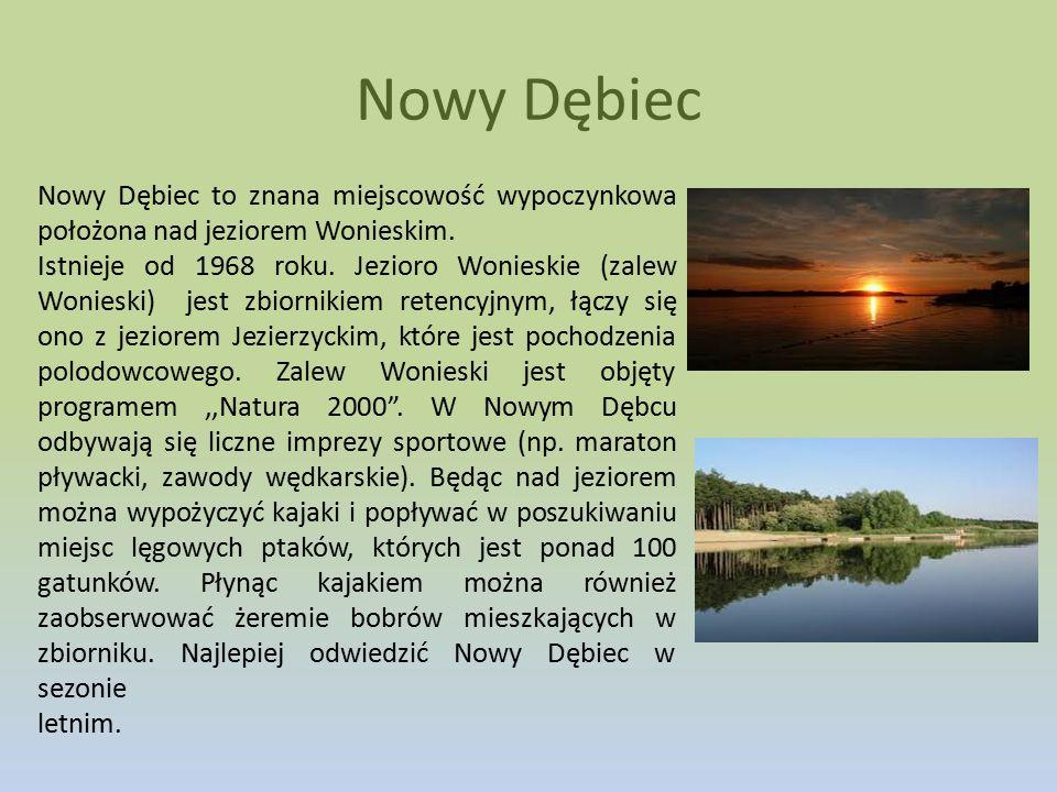 Nowy Dębiec Nowy Dębiec to znana miejscowość wypoczynkowa położona nad jeziorem Wonieskim. Istnieje od 1968 roku. Jezioro Wonieskie (zalew Wonieski) j