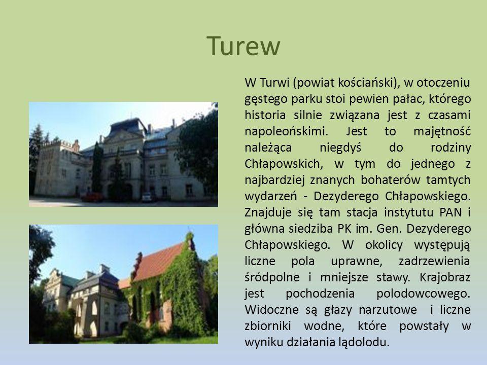 Turew W Turwi (powiat kościański), w otoczeniu gęstego parku stoi pewien pałac, którego historia silnie związana jest z czasami napoleońskimi. Jest to