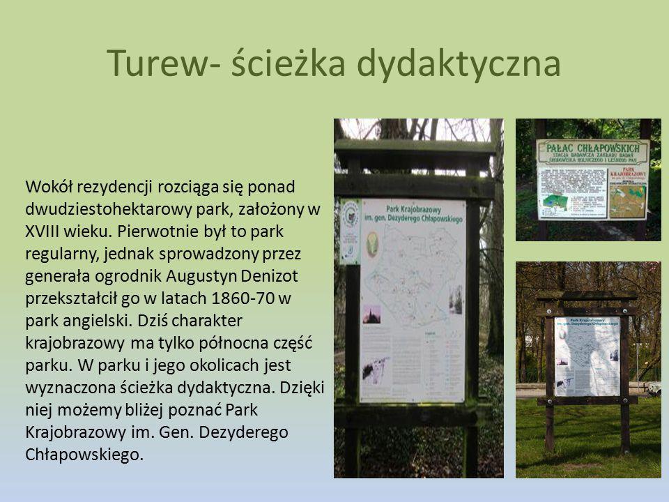 Turew- ścieżka dydaktyczna Wokół rezydencji rozciąga się ponad dwudziestohektarowy park, założony w XVIII wieku. Pierwotnie był to park regularny, jed