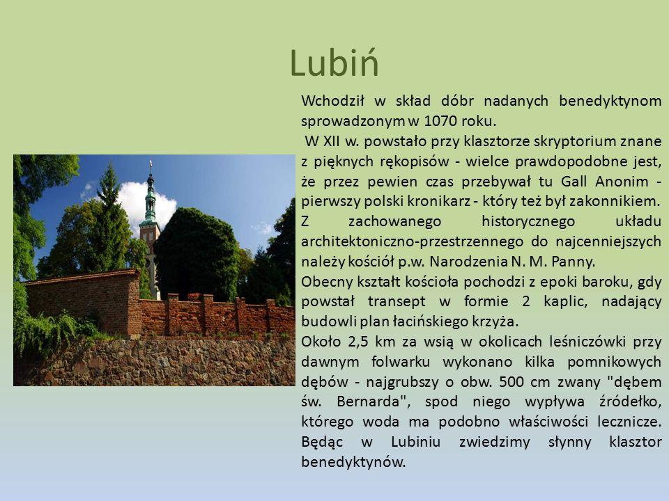 Lubiń Wchodził w skład dóbr nadanych benedyktynom sprowadzonym w 1070 roku. W XII w. powstało przy klasztorze skryptorium znane z pięknych rękopisów -
