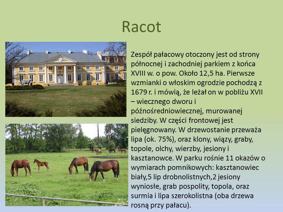 Zespół pałacowy otoczony jest od strony północnej i zachodniej parkiem z końca XVIII w. o pow. Około 12,5 ha. Pierwsze wzmianki o włoskim ogrodzie poc