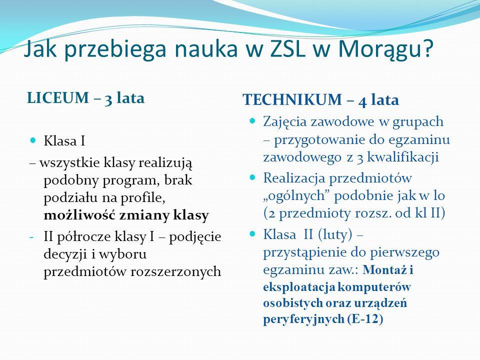 Jak przebiega nauka w ZSL w Morągu? LICEUM – 3 lata TECHNIKUM – 4 lata Klasa I – wszystkie klasy realizują podobny program, brak podziału na profile,
