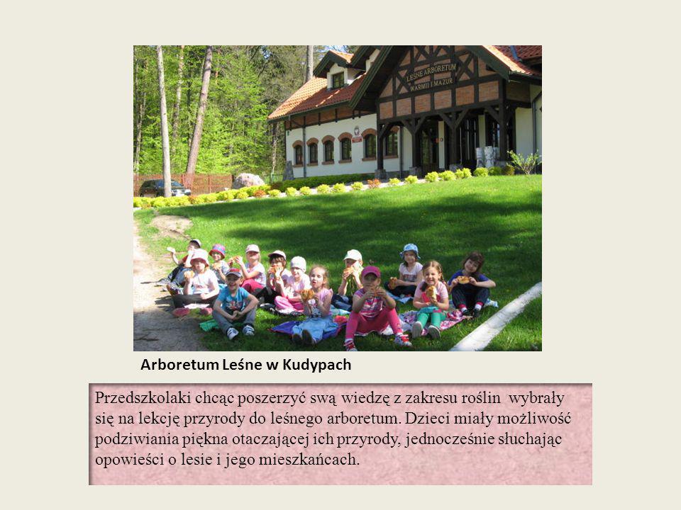 Arboretum Leśne w Kudypach Przedszkolaki chcąc poszerzyć swą wiedzę z zakresu roślin wybrały się na lekcję przyrody do leśnego arboretum. Dzieci miały