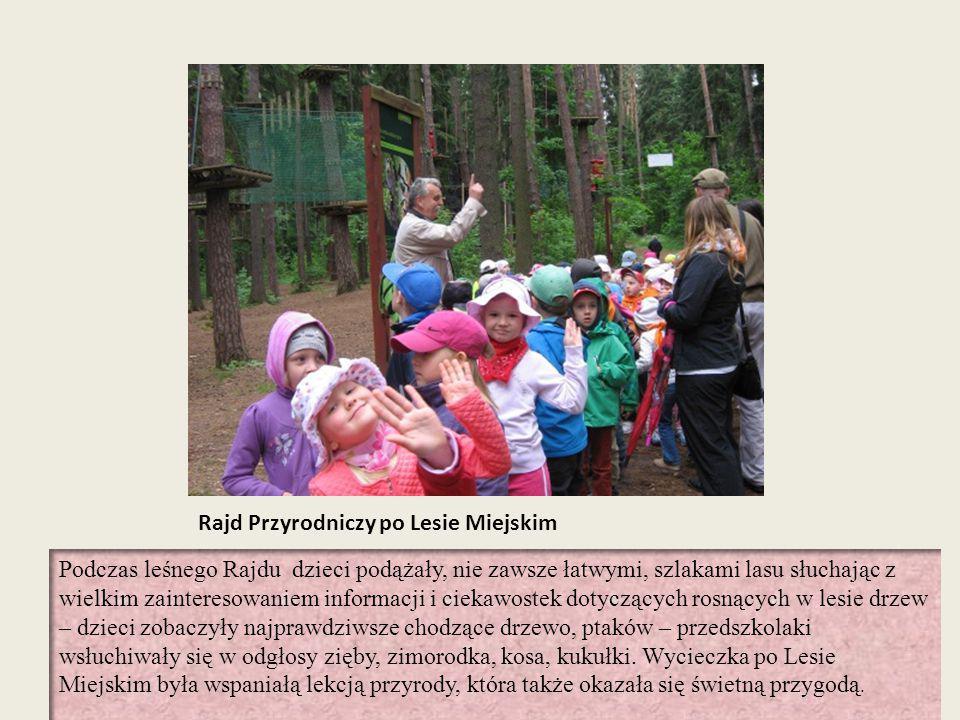 Rajd Przyrodniczy po Lesie Miejskim Podczas leśnego Rajdu dzieci podążały, nie zawsze łatwymi, szlakami lasu słuchając z wielkim zainteresowaniem info
