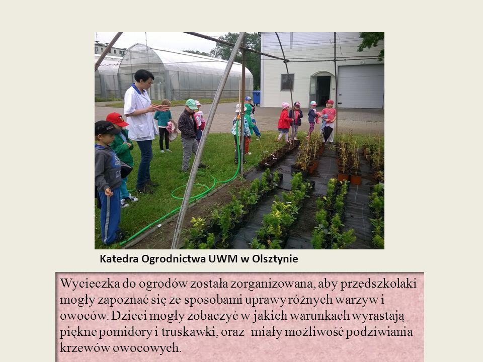 Katedra Ogrodnictwa UWM w Olsztynie Wycieczka do ogrodów została zorganizowana, aby przedszkolaki mogły zapoznać się ze sposobami uprawy różnych warzy