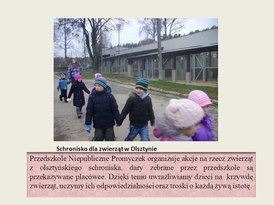 Schronisko dla zwierząt w Olsztynie Przedszkole Niepubliczne Promyczek organizuje akcje na rzecz zwierząt z olsztyńskiego schroniska, dary zebrane prz