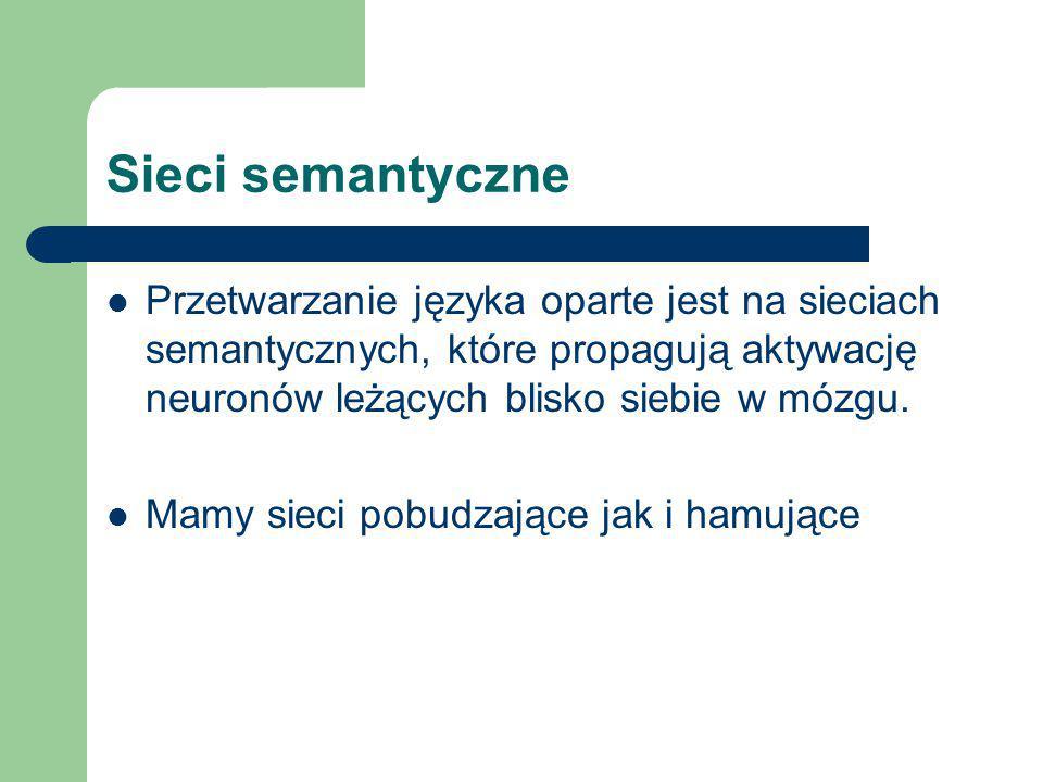 Sieci semantyczne Przetwarzanie języka oparte jest na sieciach semantycznych, które propagują aktywację neuronów leżących blisko siebie w mózgu. Mamy