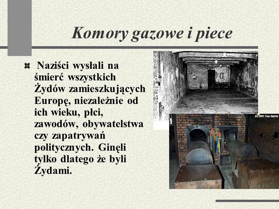 Auschwitz II - Birkenau Obóz Auschwitz – Brzezinka (w 1944 liczył ponad dziewięćdziesiąt tysięcy więźniów), największy w oświęcimskim kompleksie. Nazi