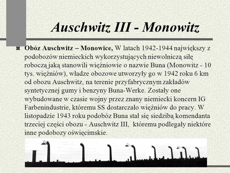 Komory gazowe i piece Naziści wysłali na śmierć wszystkich Żydów zamieszkujących Europę, niezależnie od ich wieku, płci, zawodów, obywatelstwa czy zap