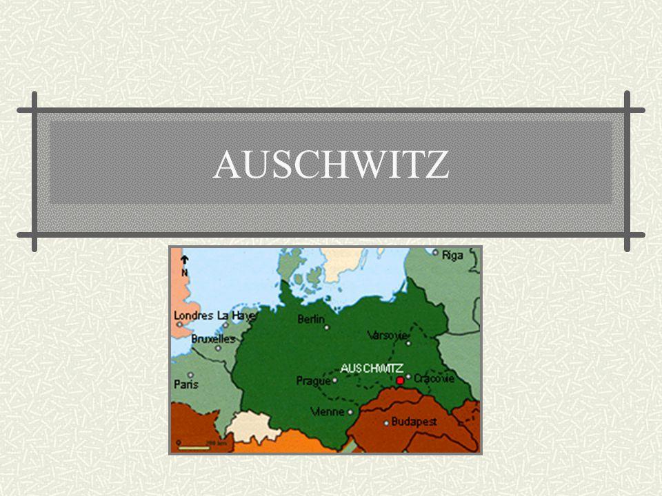 Podstawowymi elementami ideologii nazistowskiej były: RASIZM - Nazizm wysuwał tezy o nadrzędności rasy aryjskiej (Niemców), stanowiącej rasę panów, or