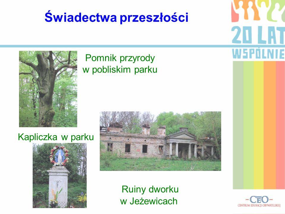 Pomnik przyrody w pobliskim parku Ruiny dworku w Jeżewicach Kapliczka w parku Świadectwa przeszłości