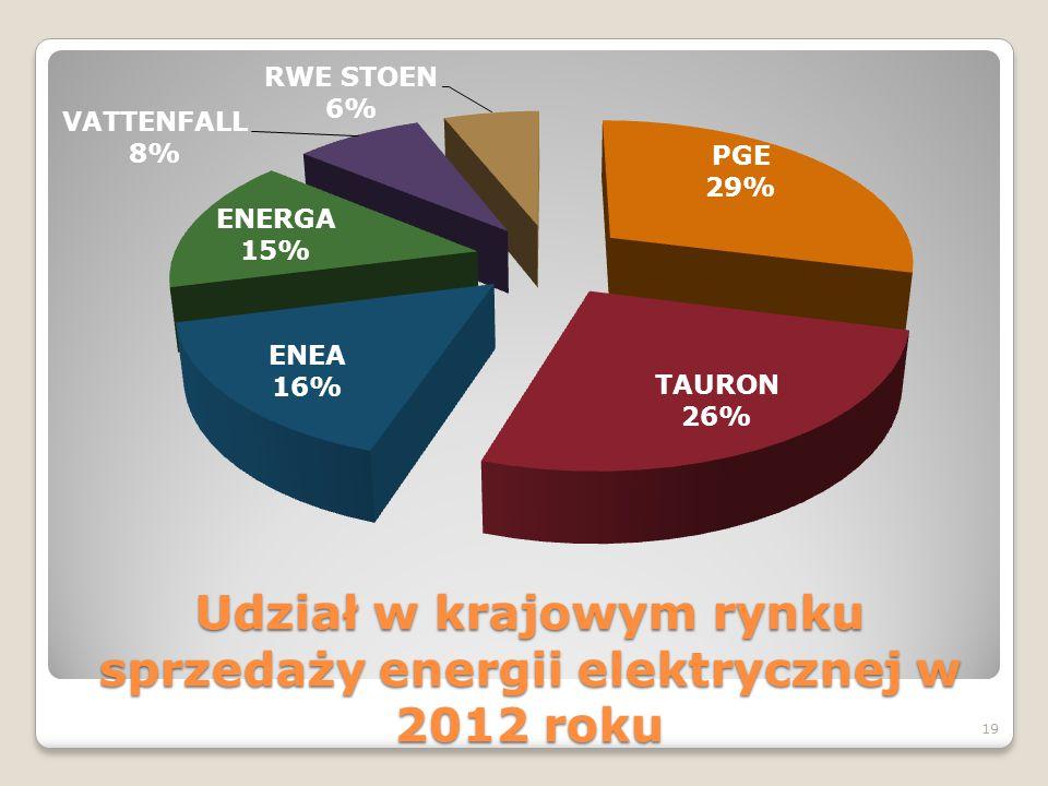 Udział w krajowym rynku sprzedaży energii elektrycznej w 2012 roku 19