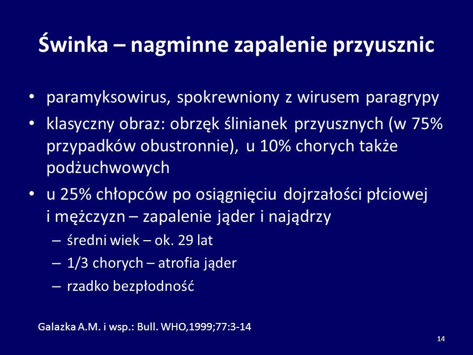 Świnka – nagminne zapalenie przyusznic paramyksowirus, spokrewniony z wirusem paragrypy klasyczny obraz: obrzęk ślinianek przyusznych (w 75% przypadkó