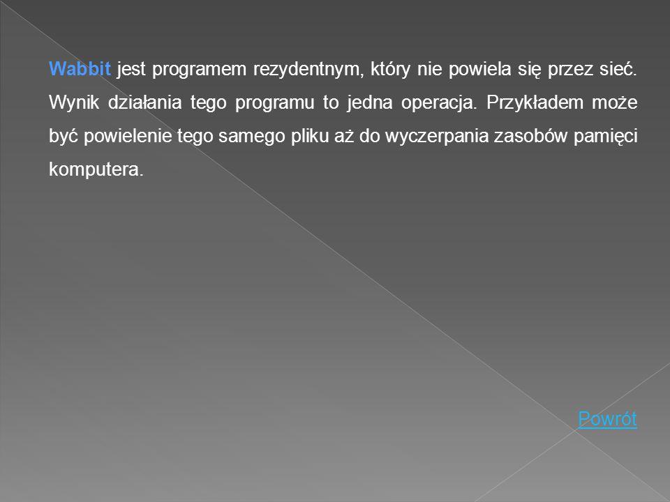 Wabbit jest programem rezydentnym, który nie powiela się przez sieć. Wynik działania tego programu to jedna operacja. Przykładem może być powielenie t