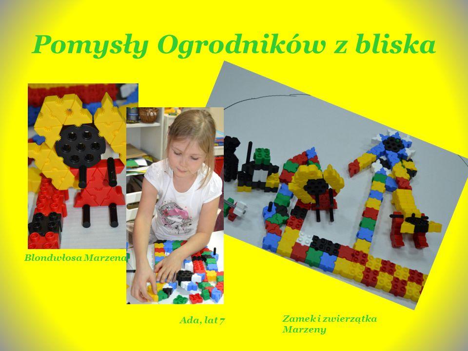 Pomysły Ogrodników z bliska Blondwłosa Marzena Ada, lat 7 Zamek i zwierzątka Marzeny