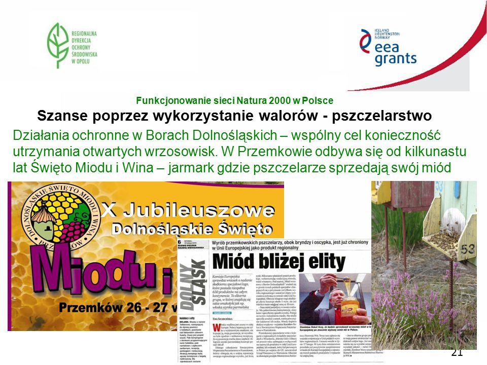 21 Działania ochronne w Borach Dolnośląskich – wspólny cel konieczność utrzymania otwartych wrzosowisk. W Przemkowie odbywa się od kilkunastu lat Świę