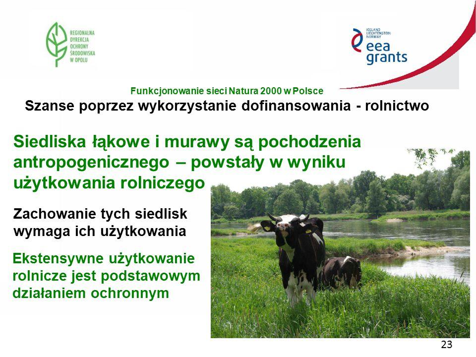 23 Siedliska łąkowe i murawy są pochodzenia antropogenicznego – powstały w wyniku użytkowania rolniczego Zachowanie tych siedlisk wymaga ich użytkowan