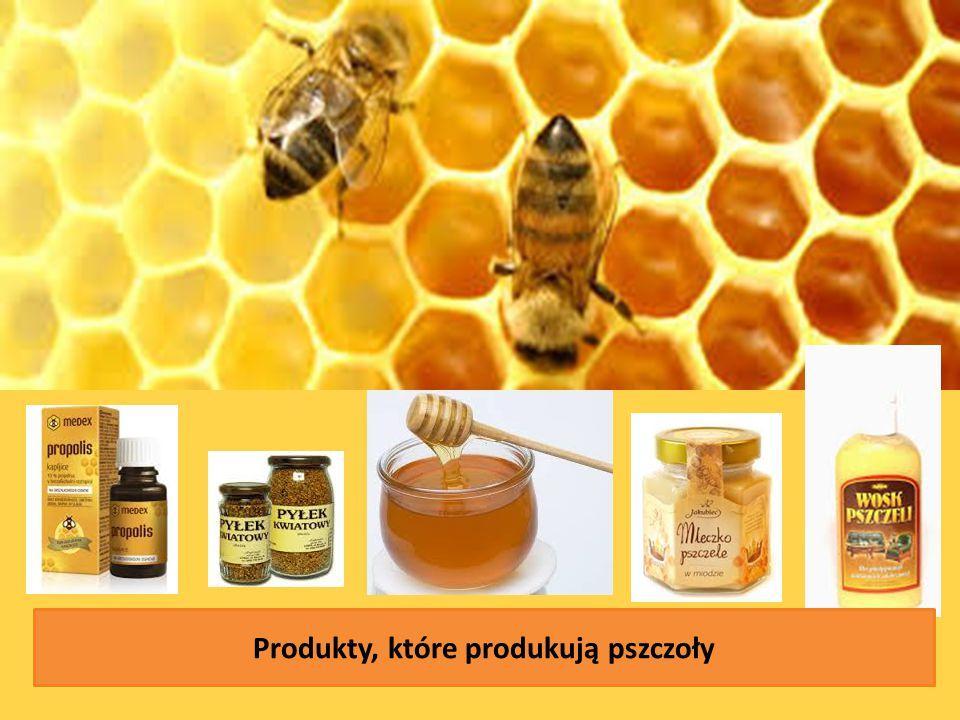 Produkty, które produkują pszczoły