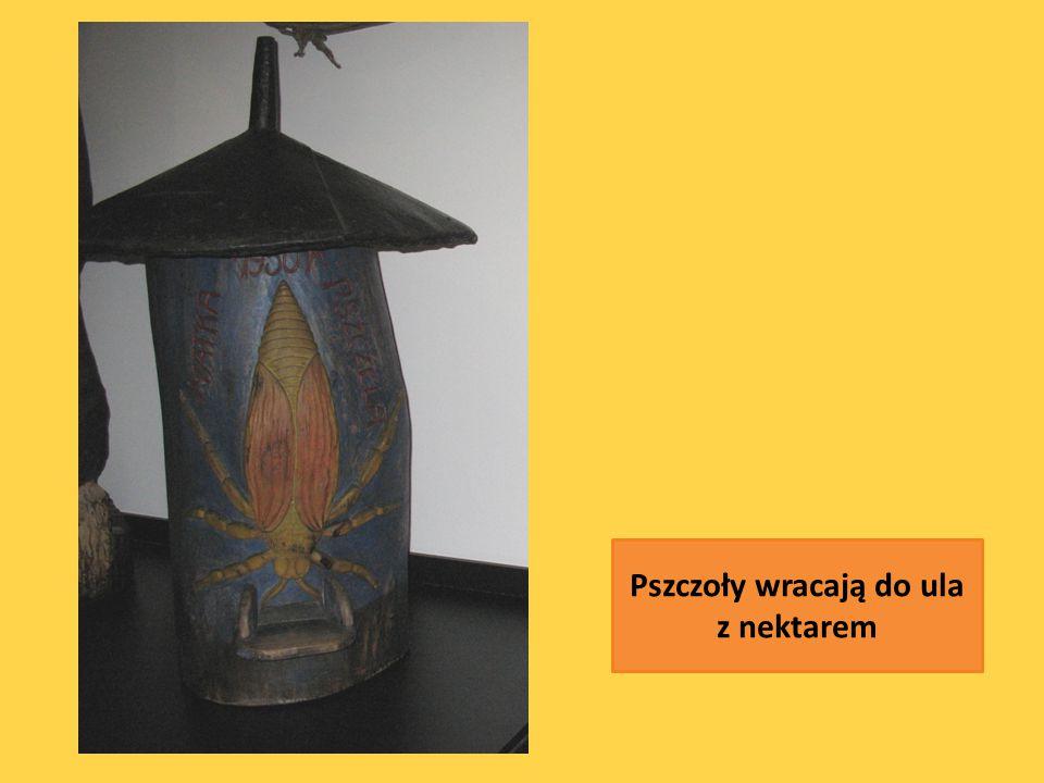 Z wosku wykonywano świece (gromnice, błażejówki) oraz wota czyli ofiary, które zanoszono do kościała w różnych intencjach.