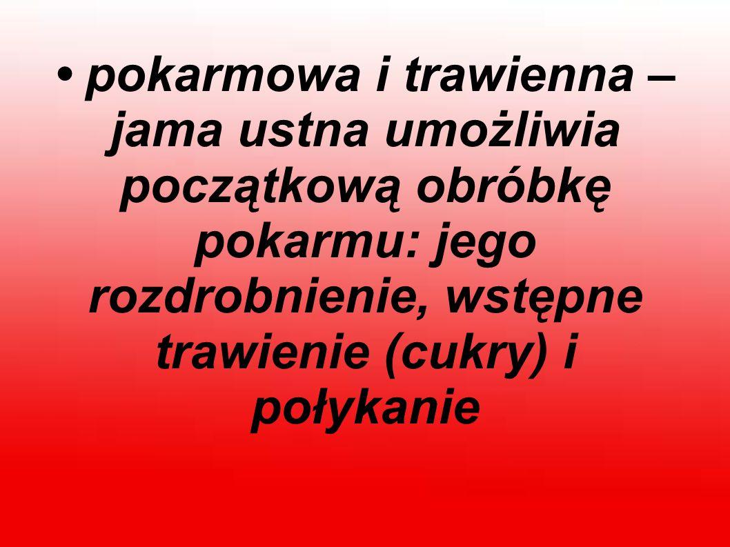 Z ostatnich badań przeprowadzonych wśród Polaków wynika, że 11 proc.