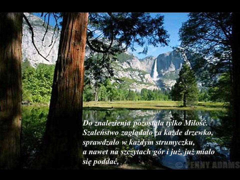 W ten sposób wszyscy zostali znalezieni: Talent wśród świeżych ziół, Smutek – w przepastnej jaskini, a Zapomnienie..cóż..