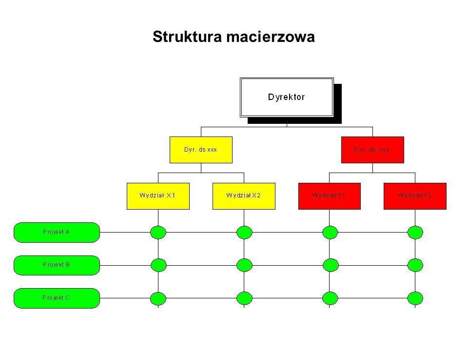Struktura macierzowa