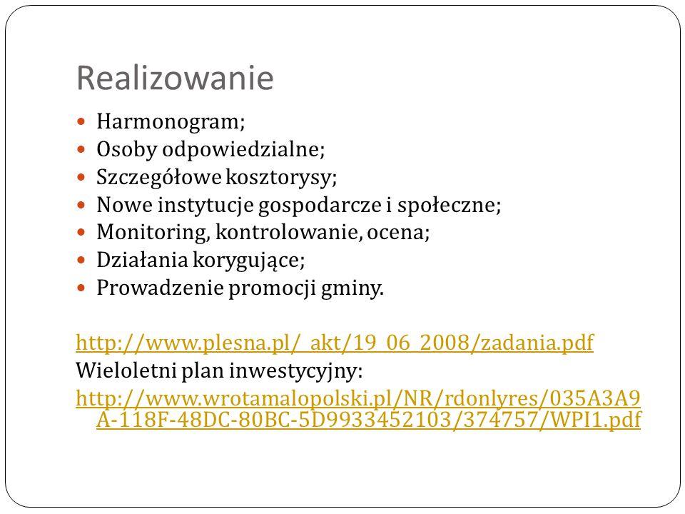 Realizowanie Harmonogram; Osoby odpowiedzialne; Szczegółowe kosztorysy; Nowe instytucje gospodarcze i społeczne; Monitoring, kontrolowanie, ocena; Dzi