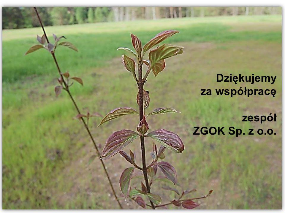 Dla rozwoju infrastruktury i środowiska Dziękujemy za współpracę zespół ZGOK Sp. z o.o.