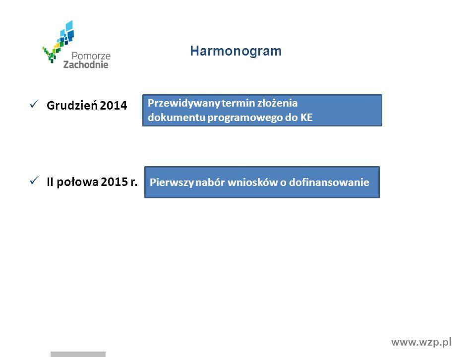 www.wzp.p l Harmonogram Grudzień 2014 II połowa 2015 r. Pierwszy nabór wniosków o dofinansowanie Przewidywany termin złożenia dokumentu programowego d