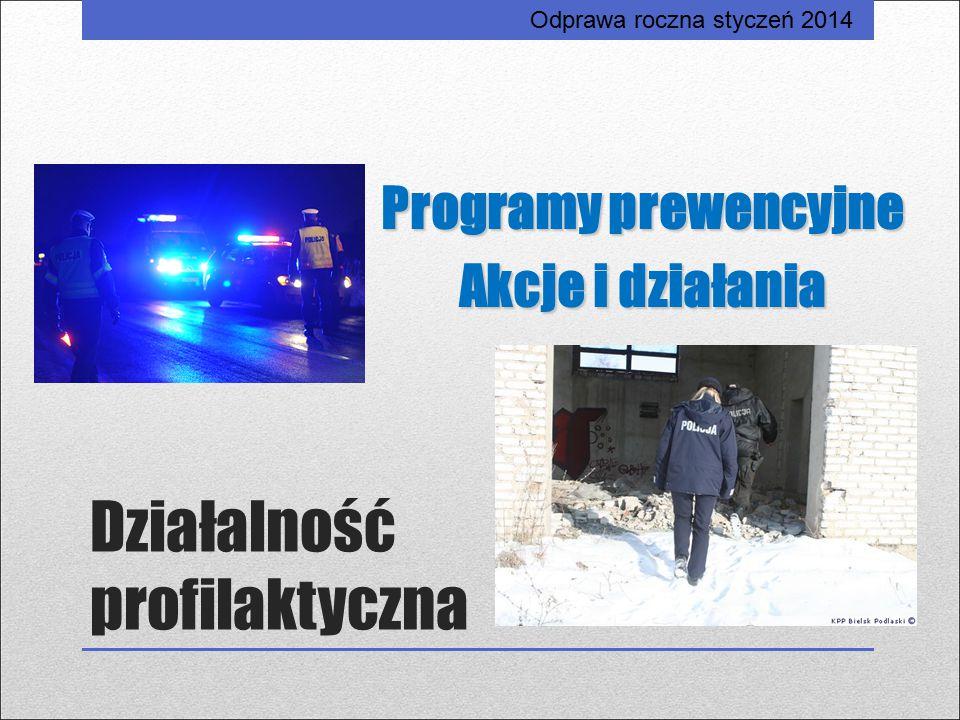 Działalność profilaktyczna Programy prewencyjne Akcje i działania Odprawa roczna styczeń 2014