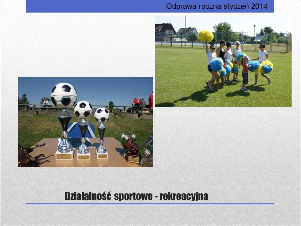 Działalność sportowo - rekreacyjna Odprawa roczna styczeń 2014