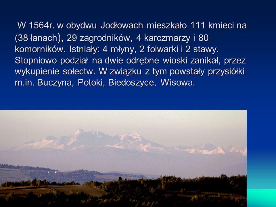 W 1564r. w obydwu Jodłowach mieszkało 111 kmieci na (38 łanach ), 29 zagrodników, 4 karczmarzy i 80 komorników. Istniały: 4 młyny, 2 folwarki i 2 staw