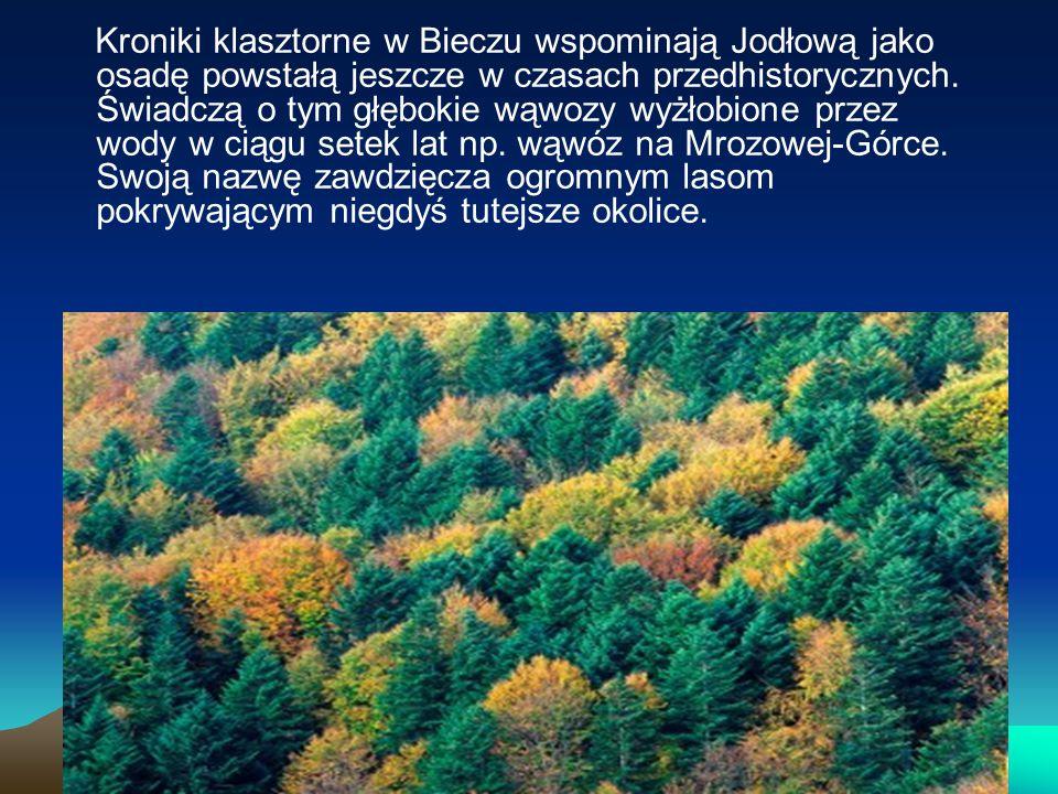 Kroniki klasztorne w Bieczu wspominają Jodłową jako osadę powstałą jeszcze w czasach przedhistorycznych. Świadczą o tym głębokie wąwozy wyżłobione prz