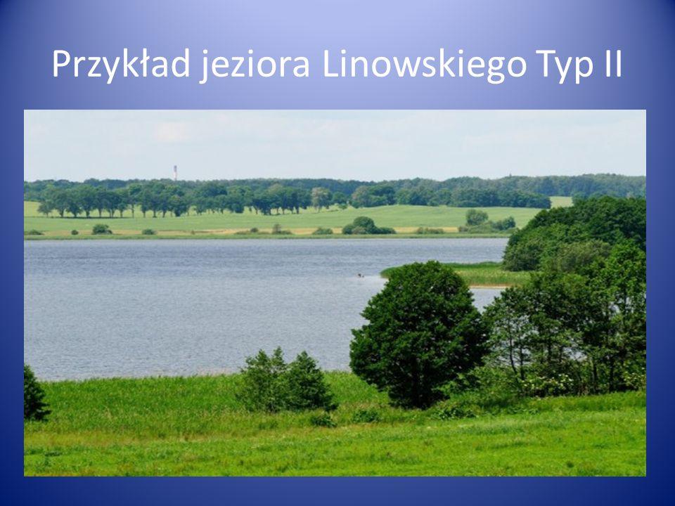 Przykład jeziora Linowskiego Typ II