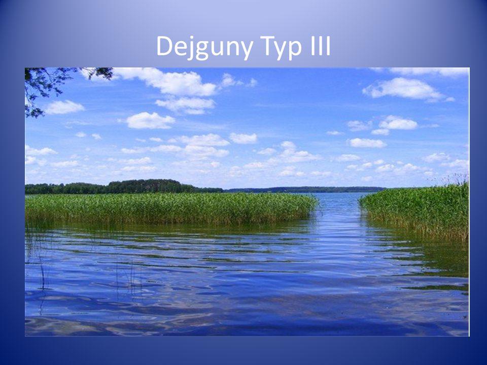 Dejguny Typ III