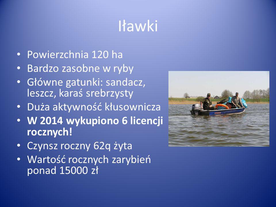 Powierzchnia 120 ha Bardzo zasobne w ryby Główne gatunki: sandacz, leszcz, karaś srebrzysty Duża aktywność kłusownicza W 2014 wykupiono 6 licencji roc