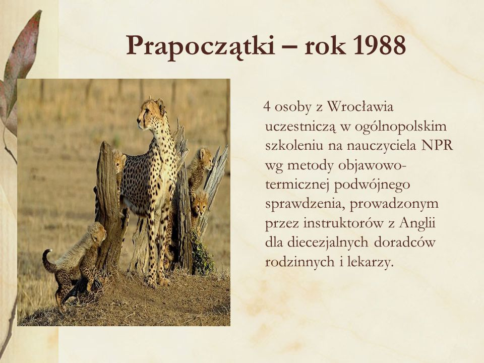 Prapoczątki – rok 1988 4 osoby z Wrocławia uczestniczą w ogólnopolskim szkoleniu na nauczyciela NPR wg metody objawowo- termicznej podwójnego sprawdzenia, prowadzonym przez instruktorów z Anglii dla diecezjalnych doradców rodzinnych i lekarzy.