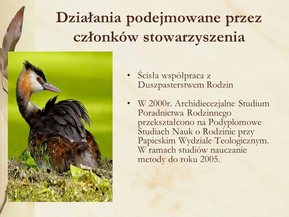 Działania podejmowane przez członków stowarzyszenia Ścisła współpraca z Duszpasterstwem Rodzin W 2000r.