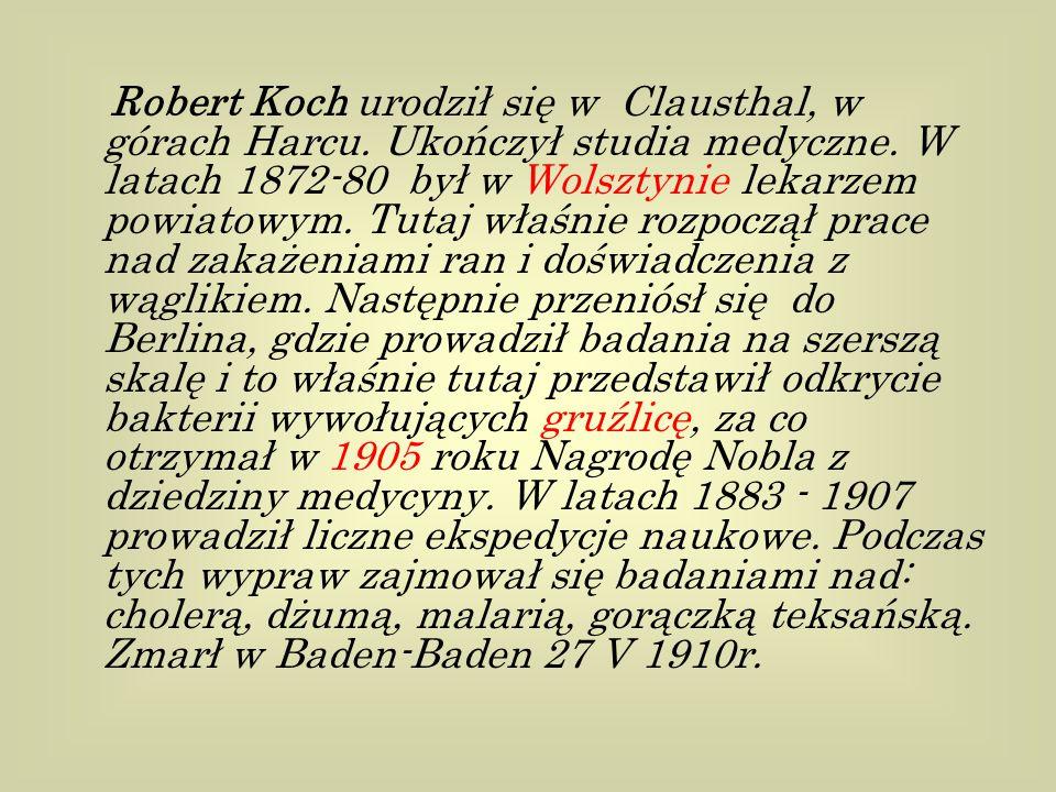 Robert Koch urodził się w Clausthal, w górach Harcu.