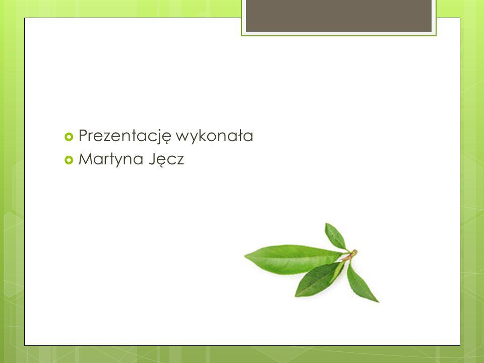  Prezentację wykonała  Martyna Jęcz