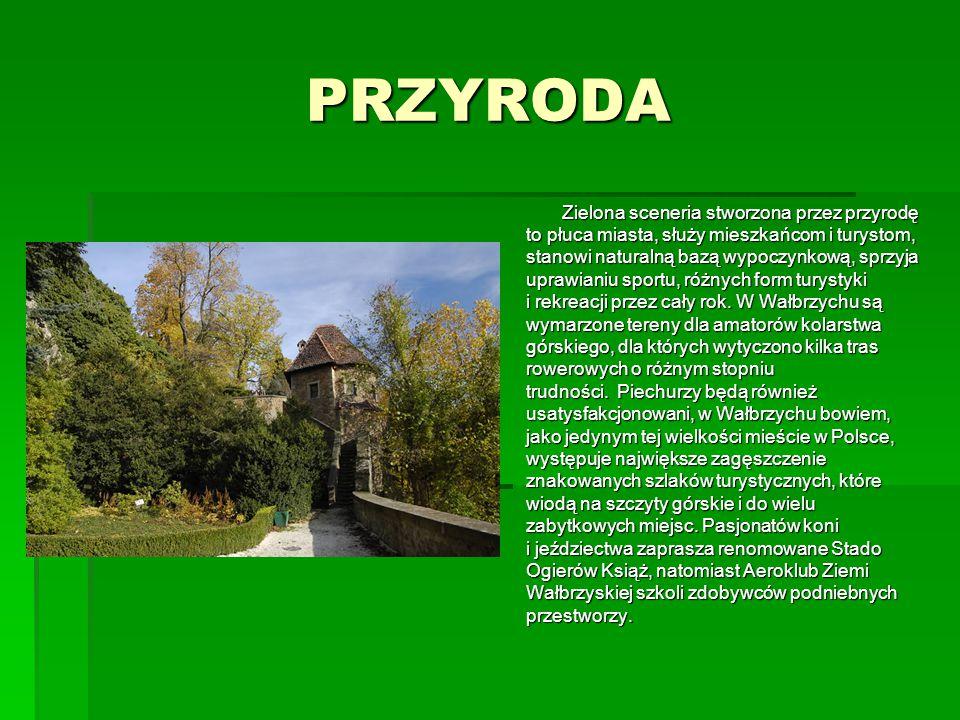 PRZYRODA Zielona sceneria stworzona przez przyrodę to płuca miasta, służy mieszkańcom i turystom, stanowi naturalną bazą wypoczynkową, sprzyja uprawia