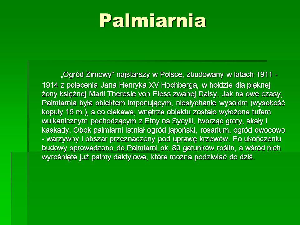 """Palmiarnia """"Ogród Zimowy"""
