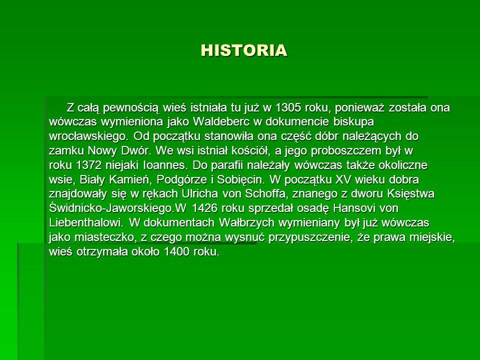 HISTORIA Z całą pewnością wieś istniała tu już w 1305 roku, ponieważ została ona wówczas wymieniona jako Waldeberc w dokumencie biskupa wrocławskiego.