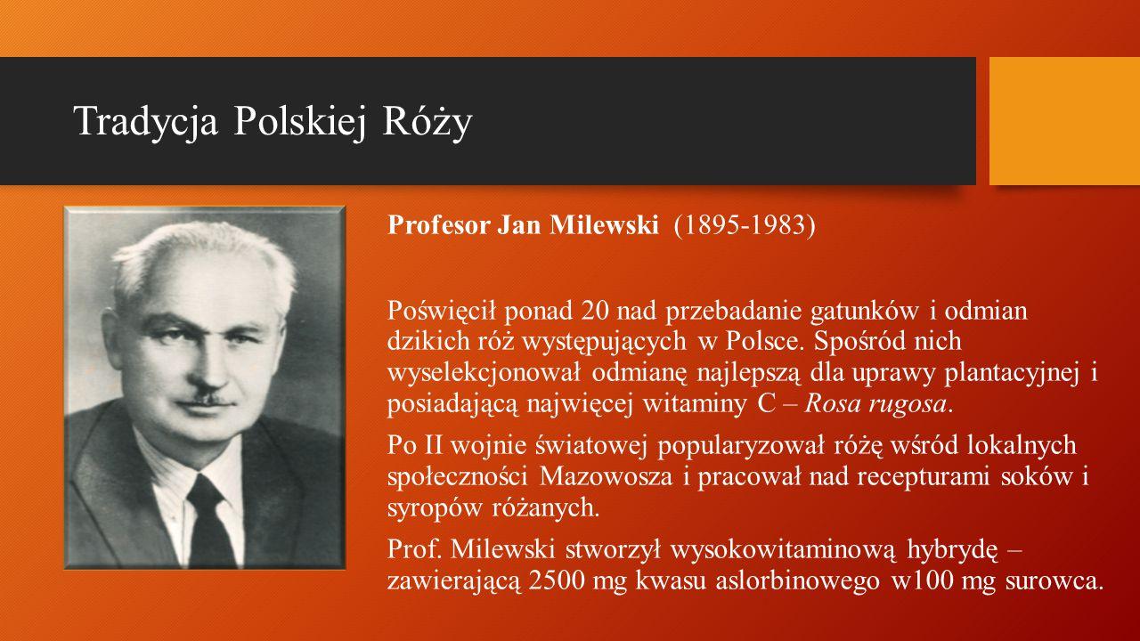 Profesor Jan Milewski (1895-1983) Poświęcił ponad 20 nad przebadanie gatunków i odmian dzikich róż występujących w Polsce. Spośród nich wyselekcjonowa