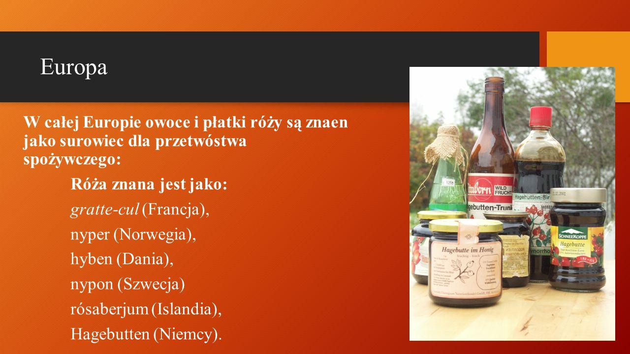 Europa W całej Europie owoce i płatki róży są znaen jako surowiec dla przetwóstwa spożywczego: Róża znana jest jako: gratte-cul (Francja), nyper (Norwegia), hyben (Dania), nypon (Szwecja) rósaberjum (Islandia), Hagebutten (Niemcy).