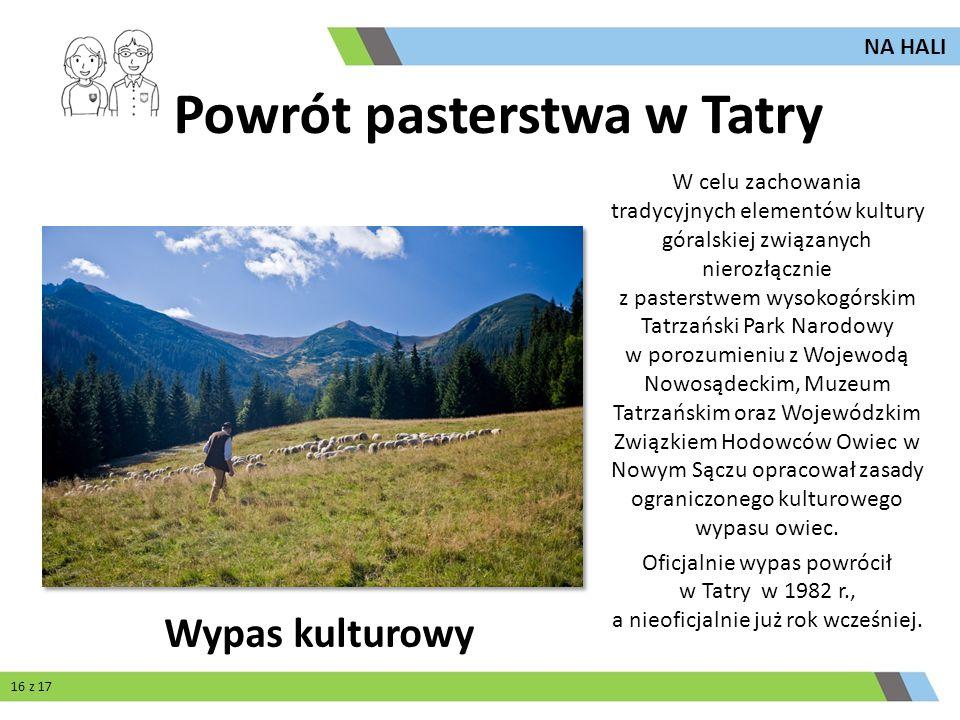 Powrót pasterstwa w Tatry W celu zachowania tradycyjnych elementów kultury góralskiej związanych nierozłącznie z pasterstwem wysokogórskim Tatrzański