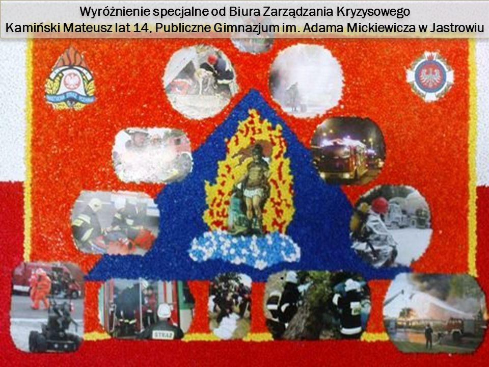 Wyróżnienie specjalne od Biura Zarządzania Kryzysowego Kamiński Mateusz lat 14, Publiczne Gimnazjum im.