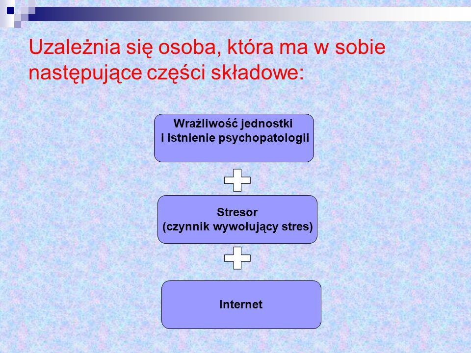 Kontakt z Internetem jest powtarzany jeżeli osoba doświadcza pozytywnych skutków.